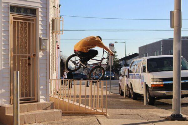 Animal Bikes Ride Pa Bmx